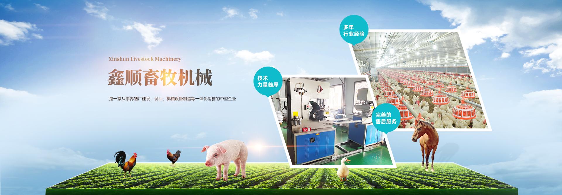 肉鸡养殖设备 ,肉鸭养殖设备