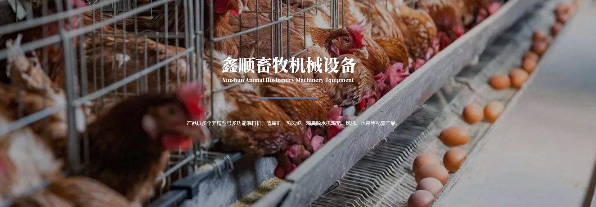 蛋鸡养殖设备,肉鸡养殖设备