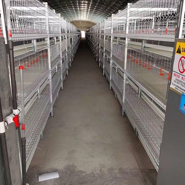 三层框架式肉鸡笼