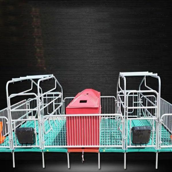母猪复合产床